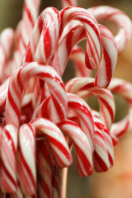 peppermint candy canes use real peppermint oil - which is mixed into a food safe flavouring