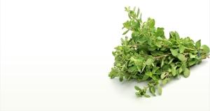 Marjoram is a calming herb