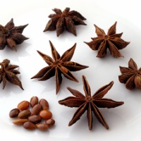 Star Anise, Aniseed and Fennel Essential Oils - What's the Diff?