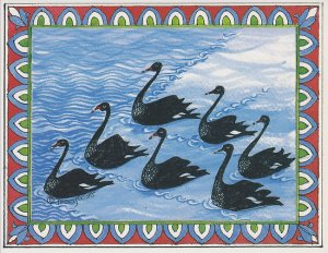 7 Swans swimming by Tracy Watt - pic via www.redbubble.com