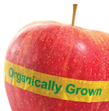 Organic apple - pic via esmmweighless.com