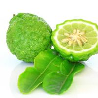 10 Recipes with Bergamot Essential Oil - Citrus bergamia