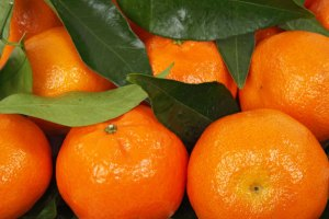 Mandarins are colourful, tasty and smell wonderful!
