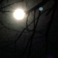 Supermoon Across The World and The Essential Oils that Add to It's Power
