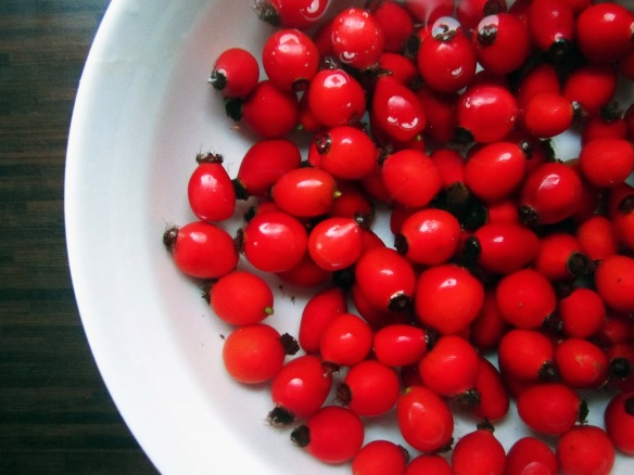 Stunning rosehips - pic via the-grazer.blogspot.com