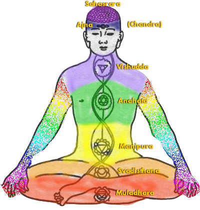 Chakras, their colours and Sanskrit names - pic via www.peacefulmind.com