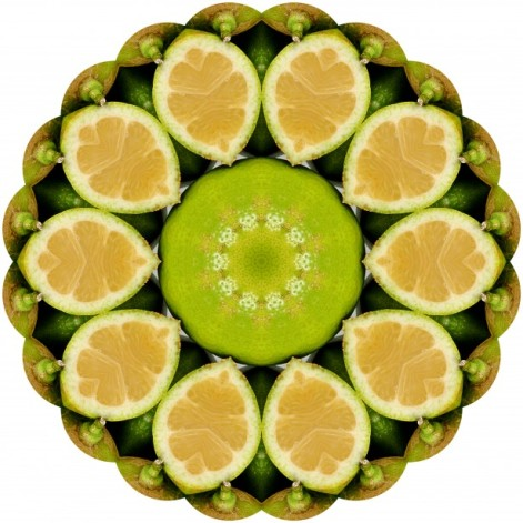 lemon mandala