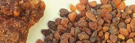 the resin of myrrh