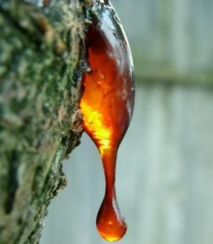 myrrh resin - pic via Pinterest