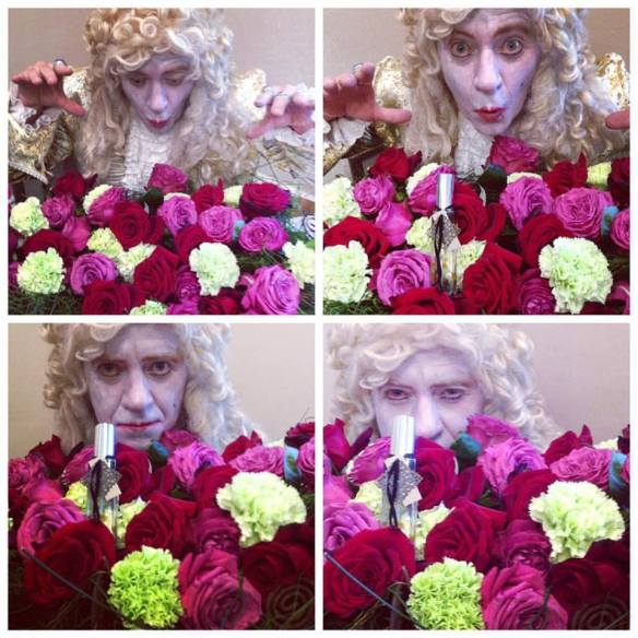 Lord Fop with roses