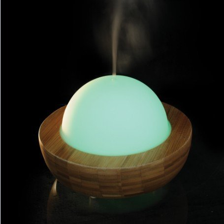 Bamboo and glass diffuser